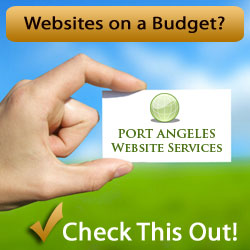 Websites on a Budget